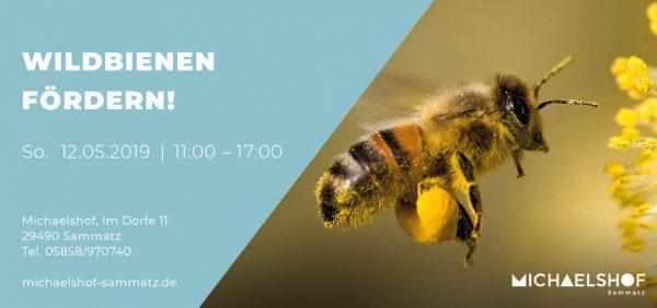 Michaelshof Seminar Haus der Natur Seminar Wildbienen fördern!