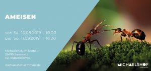 Michaelshof Seminar Haus der Natur Seminar Ameisen