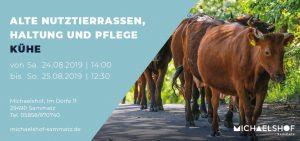 Michaelshof Seminar Haus der Natur Seminar Alte Nutztierrassen - Kühe