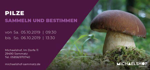 Michaelshof Seminar Haus der Natur Seminar Pilze Sammeln und bestimmen