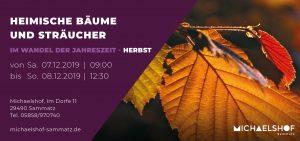 Michaelshof Seminar Haus der Natur Seminar Heimische Bäume und Sträucher - Herbst