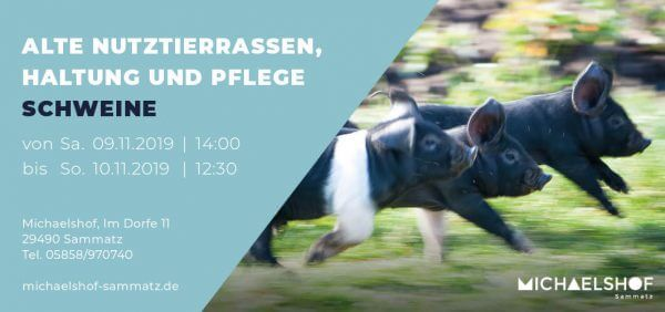 Michaelshof Seminar Haus der Natur Seminar Alte Nutztierrassen - Schweine