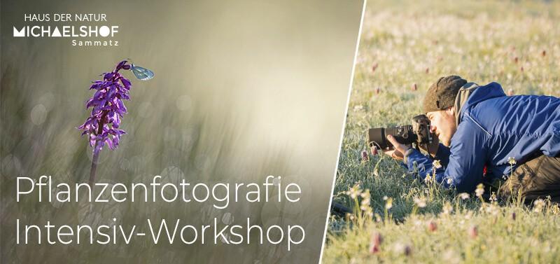 Michaelshof Sammatz News Pflanzenfotografie Radomir Jakubowski