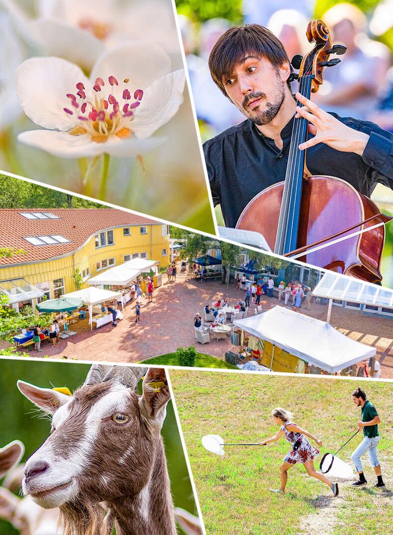 Michaelshof-sammatz | Events-Übersicht Teaser Small