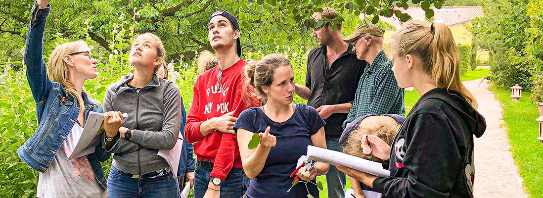 Michaelshof Sammatz   Seminar: Heimische Bäume und Sträucher Rückblick Teaser
